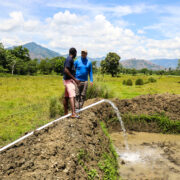 Fish Farming Project in Haiti